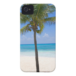 Bahamas Palm Tree iPhone 4 Cover