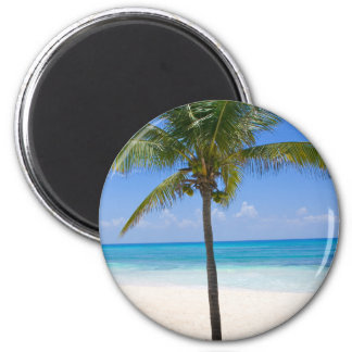 Bahamas Palm Tree Magnet