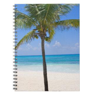 Bahamas Palm Tree Spiral Notebook