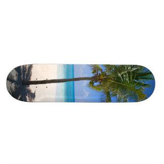 Bahamas Palm Tree Skateboard