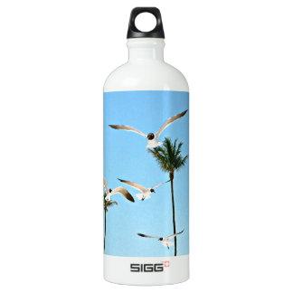 Bahamas Seagulls flying over blue skies Aluminum Water Bottle
