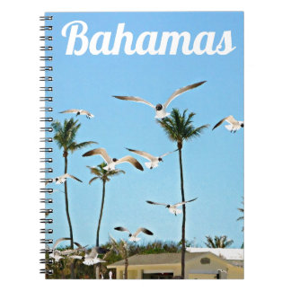 Bahamas Seagulls flying over blue skies Note Book