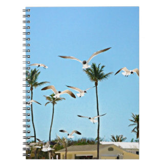 Bahamas Seagulls flying over blue skies Spiral Note Books