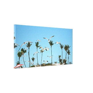 Bahamas Seagulls flying over blue skies on Canvas