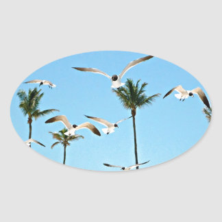 Bahamas Seagulls flying over blue skies Oval Sticker