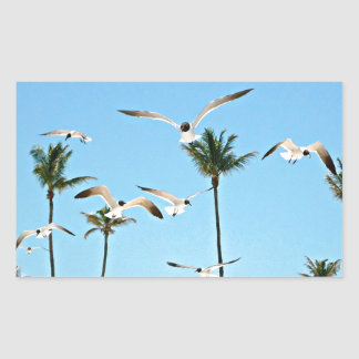 Bahamas Seagulls flying over blue skies Rectangular Sticker