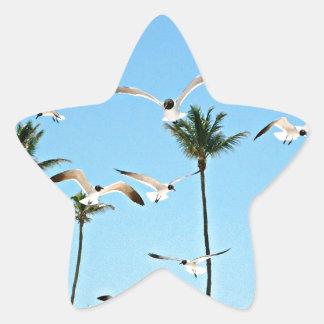 Bahamas Seagulls flying over blue skies Star Sticker