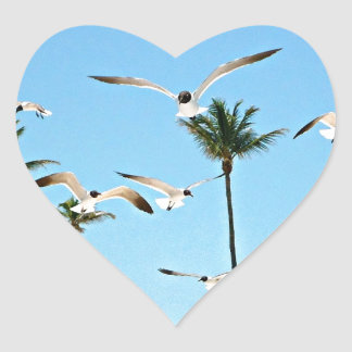 Bahamas Seagulls flying over blue skies Stickers