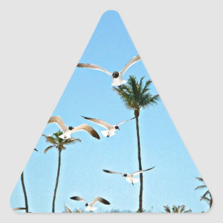 Bahamas Seagulls flying over blue skies Triangle Sticker