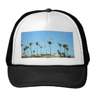 Bahamas Seagulls flying over blue skies Trucker Hat