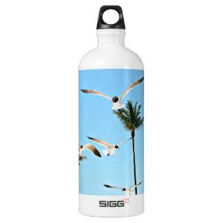Bahamas Seagulls flying over blue skies Water Bottle