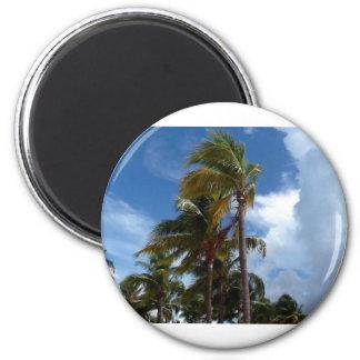 Bahamian Breezes Magnet