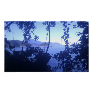 Bahía a través de la selva posters