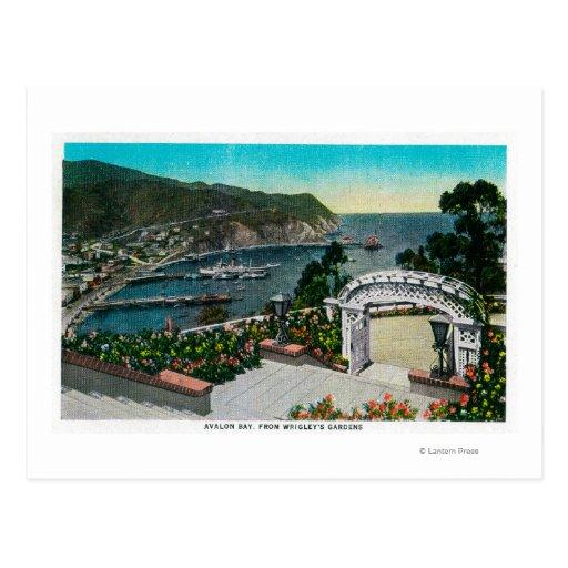 Bahía de Avalon de los jardines de Wrigley's Postal
