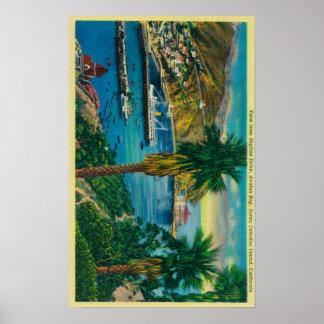 Bahía de Avalon, isla de Santa Catalina del horizo Póster