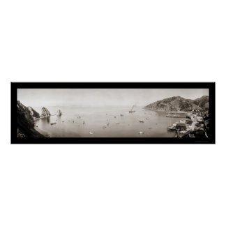 Bahía de Catalina con la foto 1915 de LG de los ba Póster