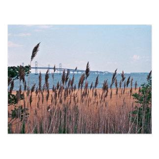 Bahía de Chesapeake Tarjetas Postales