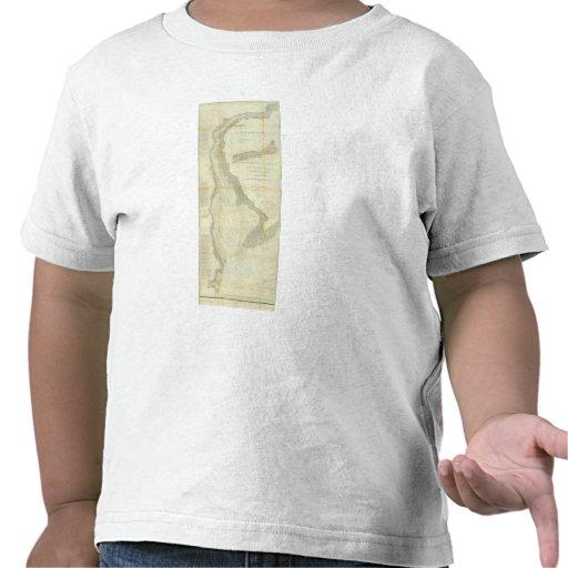Bahía de Delaware compuesta, río Camisetas