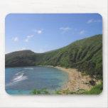 Bahía de Hanauma, Hawaii Alfombrillas De Ratones