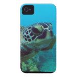 Bahía de Hanauma - Oahu Hawaii iPhone 4 Carcasas