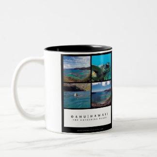 Bahía de Hanauma - Oahu Hawaii Taza Dos Tonos