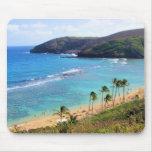Bahía de Hanauma, opinión de Honolulu, Oahu, Hawai Alfombrillas De Ratones