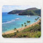 Bahía de Hanauma, opinión de Honolulu, Oahu, Hawai Tapetes De Ratones