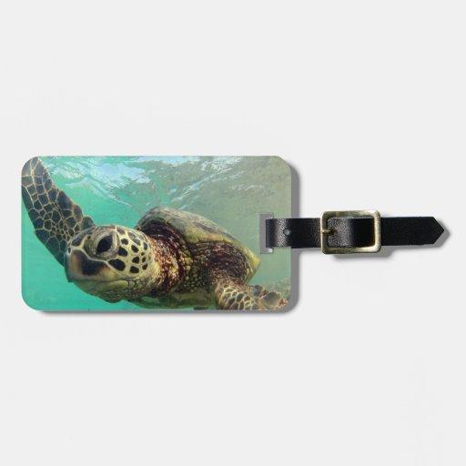 Bahía de Hanauma - tortugas de mar verde de Hawaii Etiquetas De Equipaje