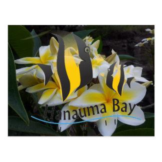 Bahía de Hawaii Hanauma - flores del Plumeria Postales