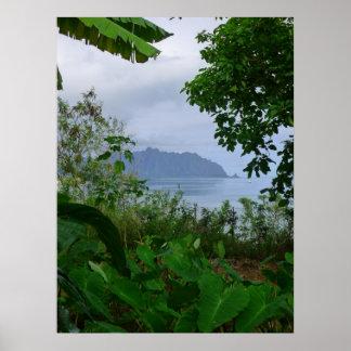 Bahía de Kaneohe Póster