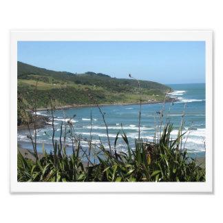 Bahía de la ballena, raglán, NZ Cojinete
