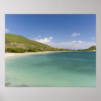 Bahía de la concha de berberecho, península surori poster