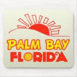 Bahía de la palma, la Florida Alfombrillas De Ratón