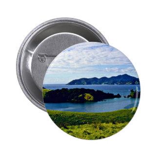 Bahía de las islas, isla del norte pins