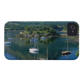 Bahía de los obispos lago Leven Ballachullish Case-Mate iPhone 4 Cárcasas