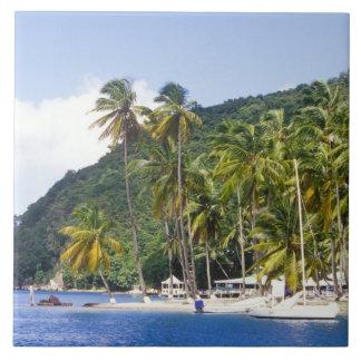 Bahía de Marigot St Lucia del Caribe Teja