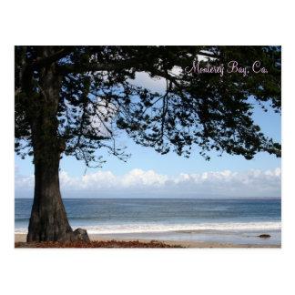 Bahía de Monterey, postal del CA