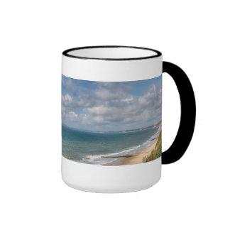 Bahía de Poole Taza De Dos Colores
