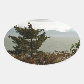 Bahía de Scenics Kachemak Pegatina Ovalada