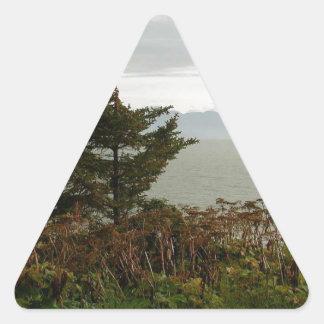Bahía de Scenics Kachemak Pegatina Triangular