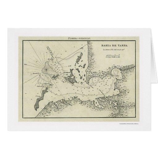Bahia De Tampa Florida Map 1809 Card