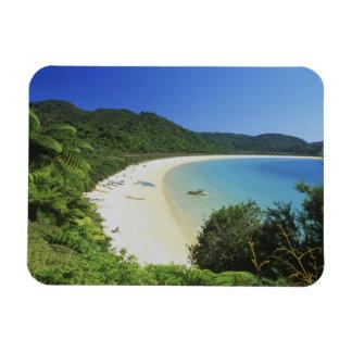 Bahía de Tonga, Abel Tasman NP, isla del sur, nuev Imán De Vinilo