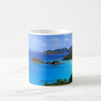Bahía del canela, St. John, taza de las Islas Vírg