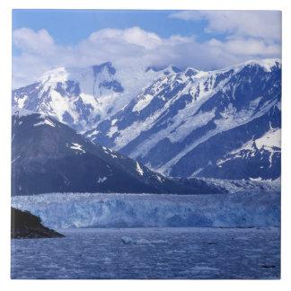 Bahía del desencanto y glaciar de Hubbard, Azulejo Cuadrado Grande
