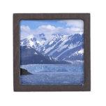 Bahía del desencanto y glaciar de Hubbard, Caja De Regalo De Calidad