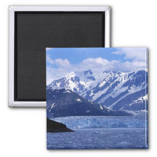 Bahía del desencanto y glaciar de Hubbard, Imanes Para Frigoríficos
