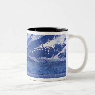 Bahía del desencanto y glaciar de Hubbard, Taza De Café