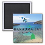 Bahía Hawaii de Hanauma Imán Cuadrado
