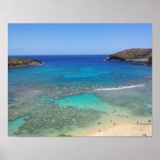 Bahía Hawaii de Hanauma Posters