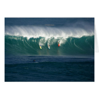 Bahía Hawaii de Waimea Tarjetón